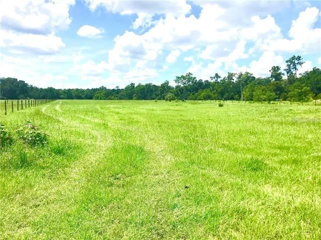 Medulla Road, Lakeland, FL 33811 (MLS #L4921219) :: Southern Associates Realty LLC