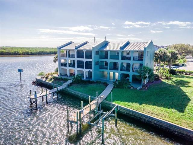 Ruskin, FL 33570 :: New Home Partners