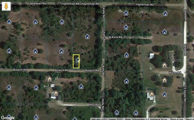 2910 W Bulaich Road, Avon Park, FL 33825 (MLS #L4921745) :: Bridge Realty Group