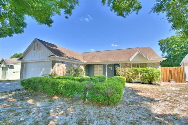 929 Sunridge Point Drive, Seffner, FL 33584 (MLS #L4921859) :: Griffin Group