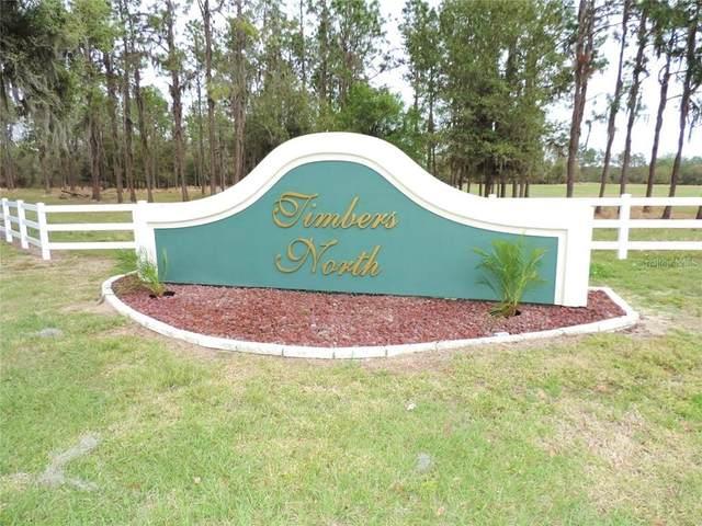 Timbers Drive, Fort Meade, FL 33841 (MLS #L4921925) :: Dalton Wade Real Estate Group