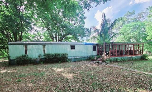 10644 Pathfinder Trail, Lakeland, FL 33809 (MLS #L4922028) :: Dalton Wade Real Estate Group