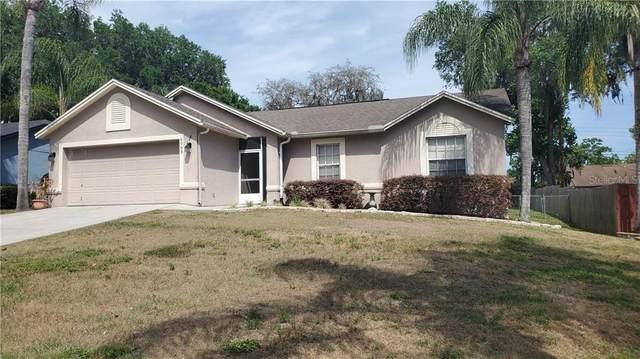6903 Doehring Drive, Lakeland, FL 33810 (MLS #L4922064) :: Alpha Equity Team