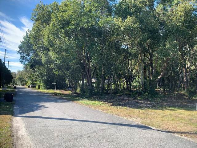 Dvorak Road, Spring Hill, FL 34610 (MLS #L4922119) :: Armel Real Estate