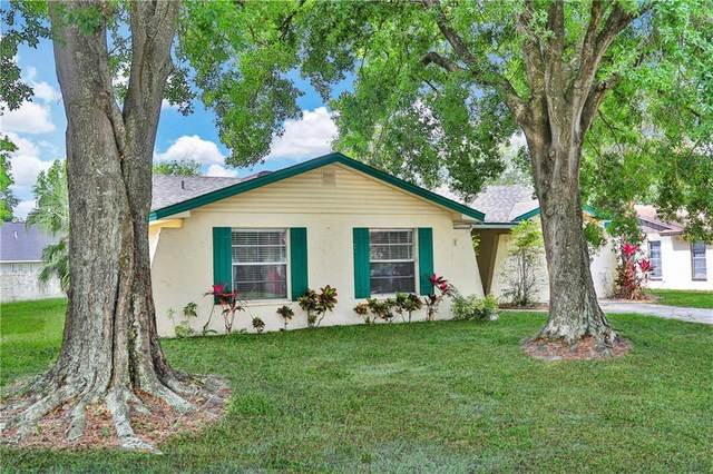 2019 Woodbriar Loop S, Lakeland, FL 33813 (MLS #L4922200) :: Team Borham at Keller Williams Realty