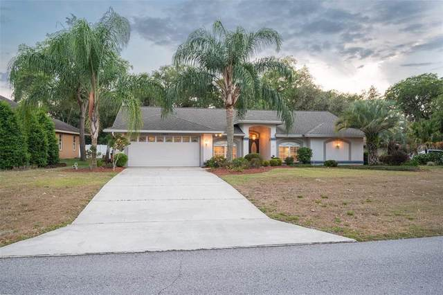 1565 Sir Henrys Trail, Lakeland, FL 33809 (MLS #L4922235) :: Florida Real Estate Sellers at Keller Williams Realty