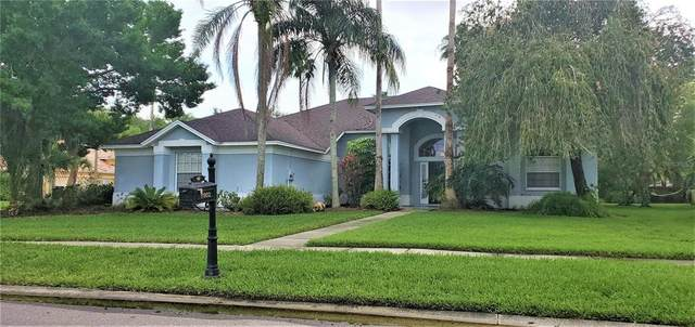 11902 Keating Drive, Tampa, FL 33626 (MLS #L4922252) :: Your Florida House Team