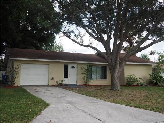 3820 Foxcroft Court, Lakeland, FL 33813 (MLS #L4922413) :: Premium Properties Real Estate Services