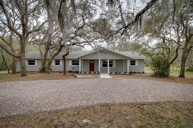 40 Blue Jordan Road, Frostproof, FL 33843 (MLS #L4922416) :: Premium Properties Real Estate Services