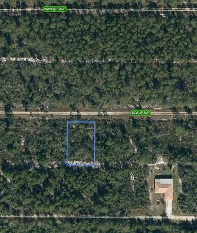533 Scaup Avenue, Sebring, FL 33872 (MLS #L4922457) :: Armel Real Estate