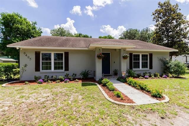 6495 N Wheeler Road, Lakeland, FL 33810 (MLS #L4922570) :: Aybar Homes