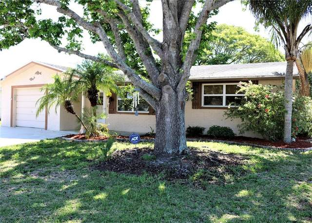 4229 Tall Oak Lane, New Port Richey, FL 34653 (MLS #L4922597) :: Premier Home Experts