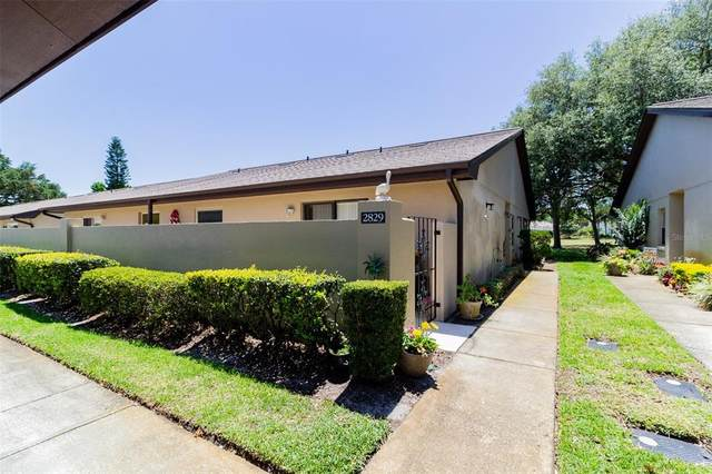 2829 Wingfoot Court, Winter Haven, FL 33884 (MLS #L4922643) :: Zarghami Group