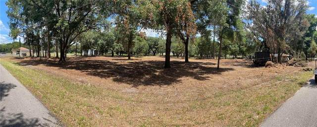 Driggers Road, Lakeland, FL 33809 (MLS #L4922644) :: SunCoast Home Experts