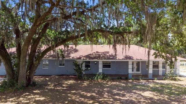 2807 E State Road 60, Plant City, FL 33567 (MLS #L4922657) :: Kelli and Audrey at RE/MAX Tropical Sands