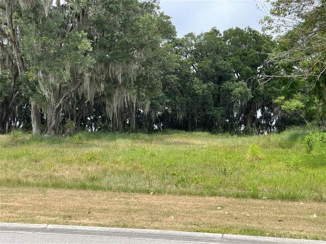 Canterwood Lane, Mulberry, FL 33860 (MLS #L4922772) :: Armel Real Estate