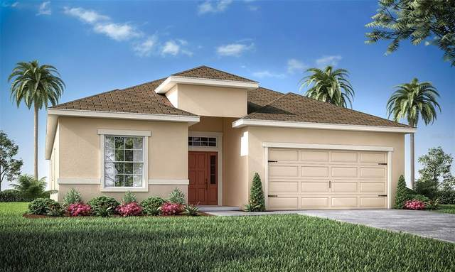 1229 Third Court, Eagle Lake, FL 33839 (MLS #L4922823) :: The Kardosh Team
