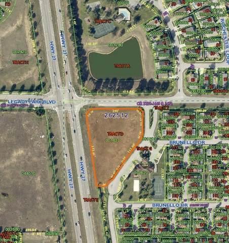 101 Tuscan Hill Boulevard, Davenport, FL 33897 (MLS #L4922937) :: CGY Realty