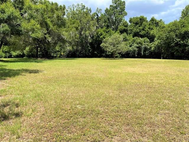 Willow Oak Court, Fort Meade, FL 33841 (MLS #L4922984) :: Zarghami Group