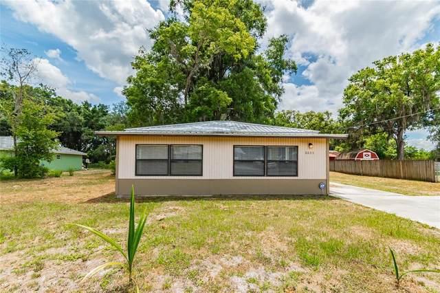 5511 Lorraine Street, Lakeland, FL 33810 (MLS #L4923117) :: The Robertson Real Estate Group