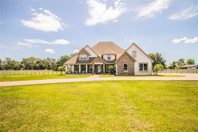 14701 Evans Ranch Road, Lakeland, FL 33809 (MLS #L4923203) :: Dalton Wade Real Estate Group