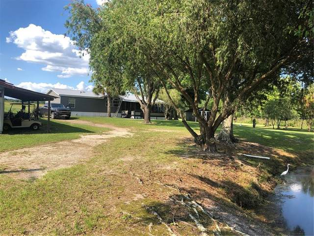 664 Campbell Road, Fort Meade, FL 33841 (MLS #L4923345) :: Zarghami Group