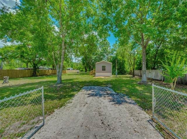 856 Saddlewood Boulevard, Lakeland, FL 33809 (MLS #L4923378) :: Armel Real Estate