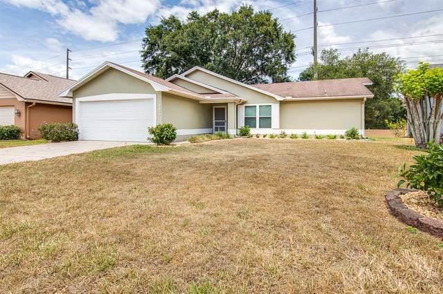 6243 Egret Drive, Lakeland, FL 33809 (MLS #L4923381) :: Griffin Group