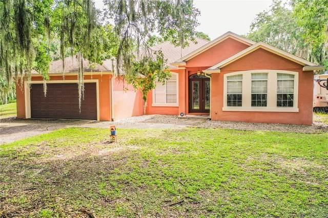 28942 Tammi Drive, Tavares, FL 32778 (MLS #L4923500) :: Team Bohannon