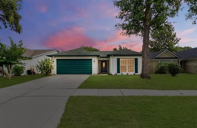 1014 Bloom Hill Avenue, Valrico, FL 33596 (MLS #L4923564) :: Charles Rutenberg Realty