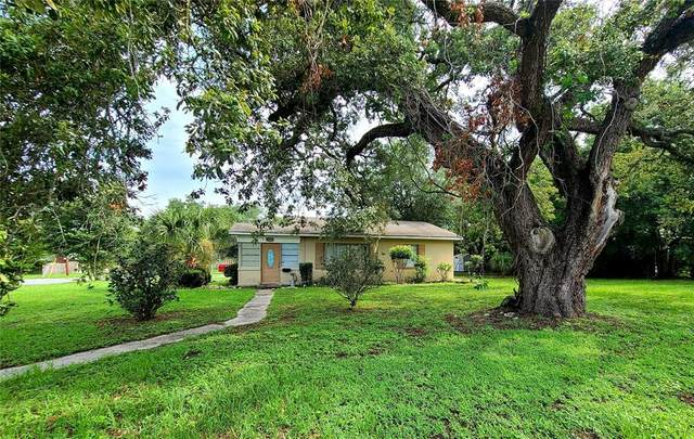 307 Young Place, Lakeland, FL 33803 (MLS #L4923607) :: The Light Team