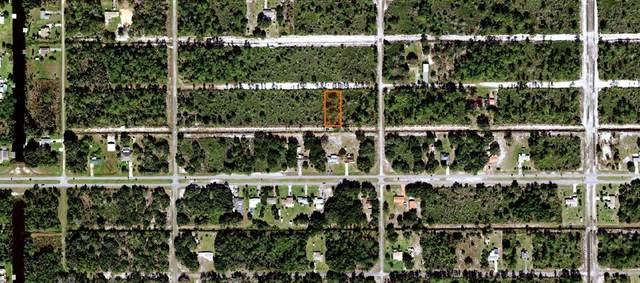 El Dorado Drive, Lake Wales, FL 33898 (MLS #L4923623) :: Team Bohannon