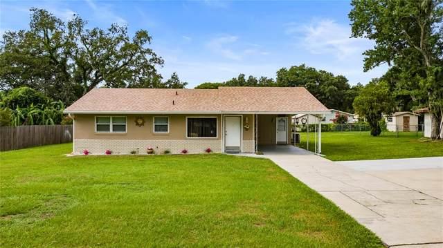 833 E Bella Vista Street, Lakeland, FL 33805 (MLS #L4923625) :: Zarghami Group