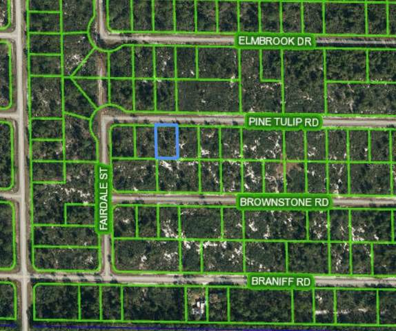 3352 Pine Tulip Road, Lake Placid, FL 33852 (MLS #L4923772) :: Globalwide Realty