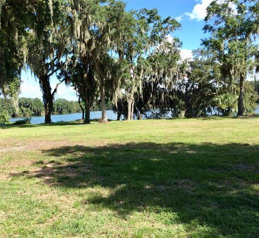 Tigereye Court, Mulberry, FL 33860 (MLS #L4924141) :: Globalwide Realty