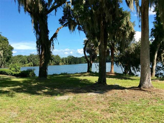Tigereye Court, Mulberry, FL 33860 (MLS #L4924152) :: Globalwide Realty