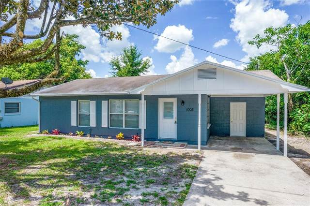 1003 Flamingo Drive, Leesburg, FL 34748 (MLS #L4924208) :: Prestige Home Realty