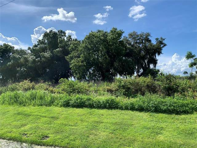 2500 State Road 37 S, Mulberry, FL 33860 (MLS #L4924236) :: Prestige Home Realty