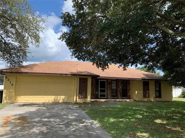 6316 Timucuans Drive, Lakeland, FL 33813 (MLS #L4924237) :: Zarghami Group