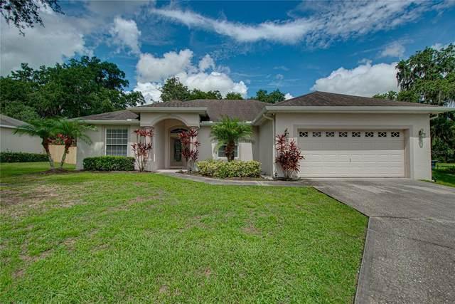 5395 Oxford Manor Circle, Lakeland, FL 33810 (MLS #L4924258) :: Zarghami Group