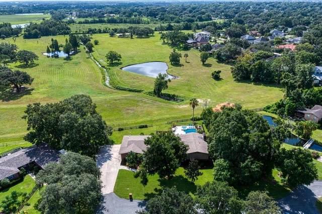 936 Wedgewood Lane, Lakeland, FL 33813 (MLS #L4924280) :: Prestige Home Realty