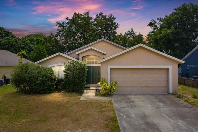 236 Kings Pond Avenue, Winter Haven, FL 33880 (MLS #L4924303) :: Zarghami Group