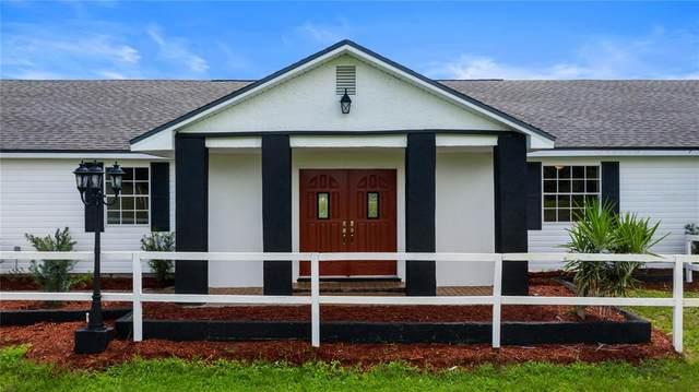 15195 Angus Road, Polk City, FL 33868 (MLS #L4924315) :: Zarghami Group