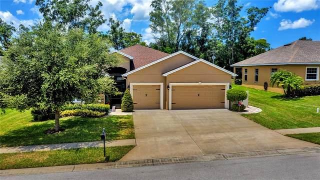 560 Auburn Hill Boulevard, Auburndale, FL 33823 (MLS #L4924353) :: Team Buky