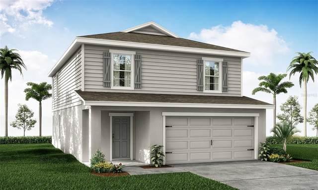 11622 Stone Pine Street, Riverview, FL 33579 (MLS #L4924361) :: Zarghami Group