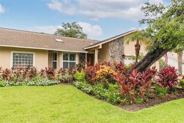 13801 75TH Avenue, Seminole, FL 33776 (MLS #L4924399) :: Vacasa Real Estate