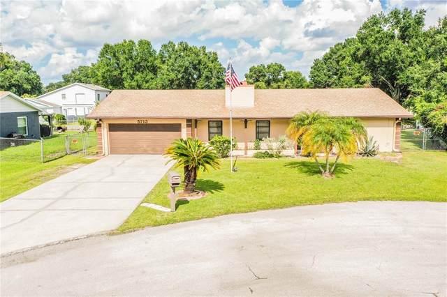 5713 Sands Point Drive, Lakeland, FL 33809 (MLS #L4924411) :: Visionary Properties Inc