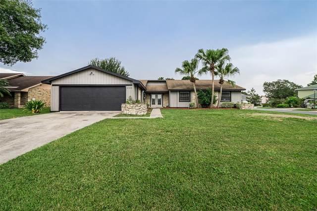 4128 Chelsea Lane, Lakeland, FL 33809 (MLS #L4924443) :: Griffin Group