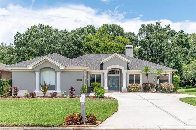 4359 Winding Oaks Circle, Mulberry, FL 33860 (MLS #L4924488) :: MavRealty