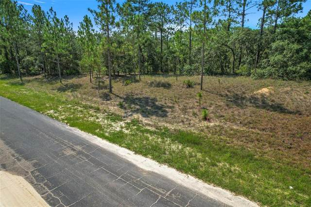 6128 W Conestoga Street, Beverly Hills, FL 34465 (MLS #L4924535) :: Premium Properties Real Estate Services